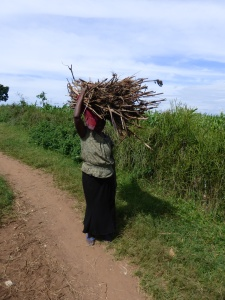 I see many women (and children) carrying bundles of wood)