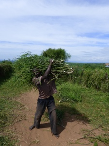 He saw me taking a picture of the lady with wood, and wanted me to take one of him too, once he had his bundle loaded!