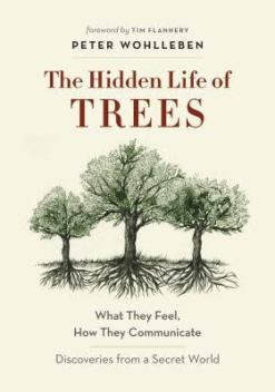 hidden life of trees